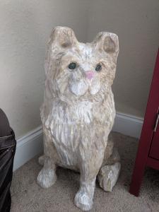 Jack the cat 2