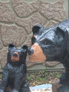 Walking black bear with cub 3