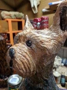 yorkie face close up 2