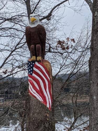 eagle watch 3