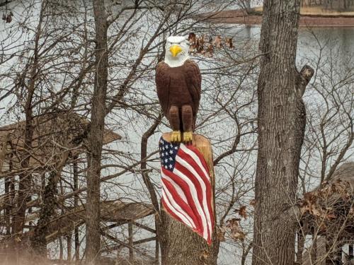 eagle watch 4